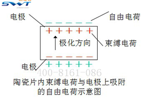 压电蜂鸣片极化图